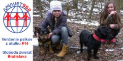 S petržalskými rečníkmi organizujeme ďalšie venčenie psíkov z útulku Sloboda zvierat v Bratislave na Poliankach.